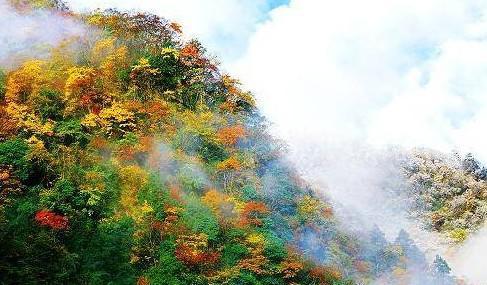 东拉山大峡谷风景区位于雅安市宝兴县境内,地处夹金山麓青衣江