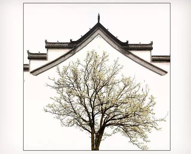 怎么拍出中国古建筑的味儿?知名摄影师用作品告诉你