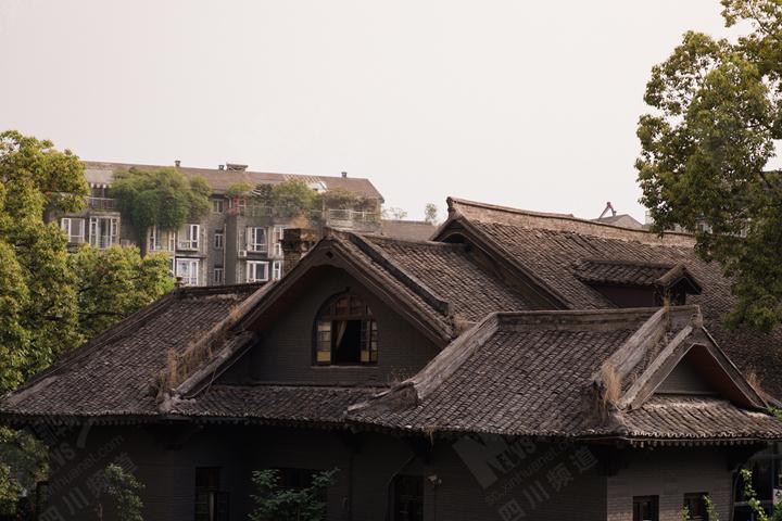 这种布局保留了部分中式建筑群的封闭与内敛,又具有西式建筑的开放图片