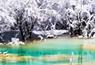 寻找四川最美雪景:黄龙景区拉开冬季游序幕