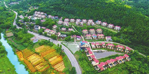 資陽市石佛鎮:綠樹掩映新村美
