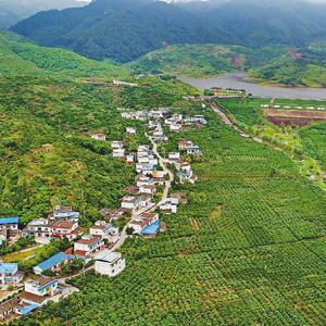 2017年四川十大幸福美麗新村正式出爐 有你家鄉嗎?