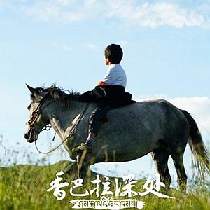 《香巴拉深处》2月10日起在四川卫视等频道播出 重温四川藏区动人故事