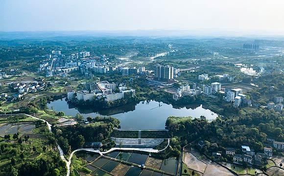 萬善鎮:加快發展物流商貿流通産業