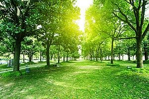 """四大主題綠道遊線路亮相 成都市民周末遊""""福利""""來了"""