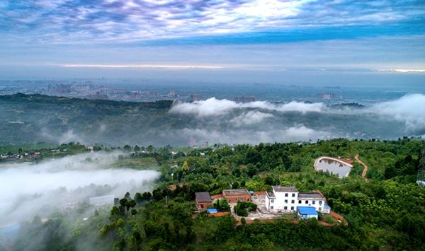 山上有雲霧雲中有人家 成都龍泉山雲瀑美若仙境