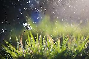 """四川端午小長假雨水幾乎""""包全場"""" 下周雨水還是常客"""
