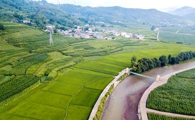 新農村風貌