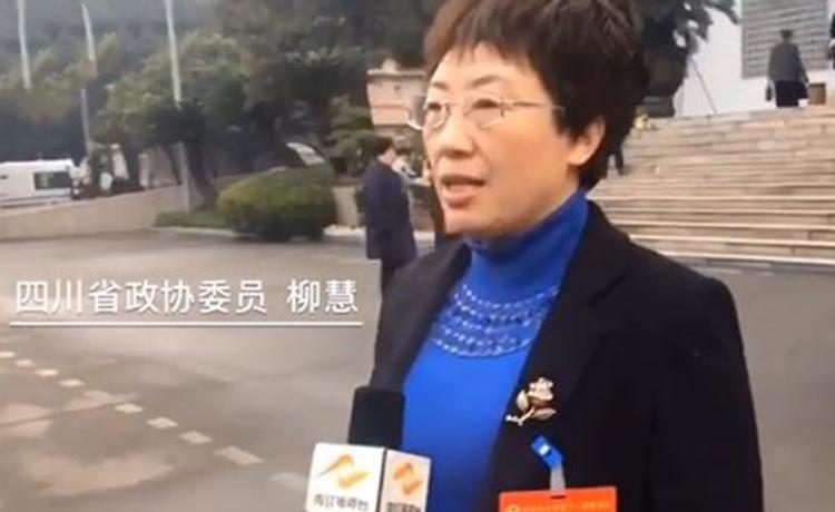四川省政协委员柳慧:对未来四川的教育工作充满期待</a>