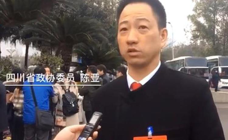 四川省政协委员陈亚:希望成立专业的民营企业家培训学院</a>