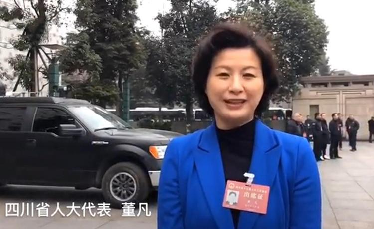 四川省人大代表董凡:推动幼儿园与小学教师规范教学</a>