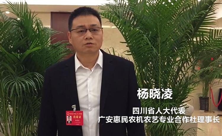 四川省人大代表杨晓凌:希望提高乡镇干部待遇