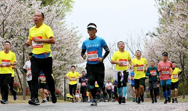 2019眉山東坡國際半程馬拉松開賽