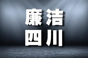 德陽市政府黨組成員、副市長楊震主動投案 接受紀律審查和監察調查