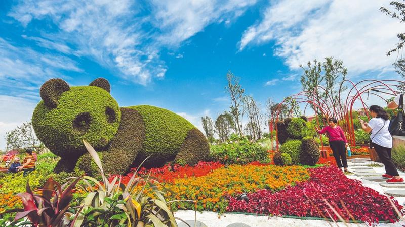天府芙蓉園:成都首個芙蓉主題公園