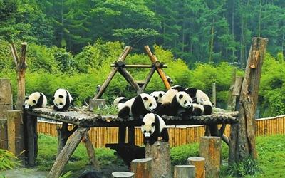 """四川省向遊客發出安全健康旅遊提示——""""五一""""出遊錯峰出行別扎堆"""