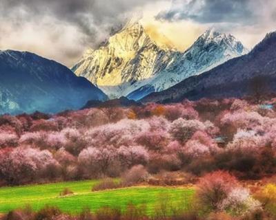 新建川藏鐵路雅安至林芝段獲批