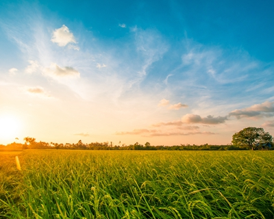 四川空氣質量持續改善 前9月優良天數率為90.7%