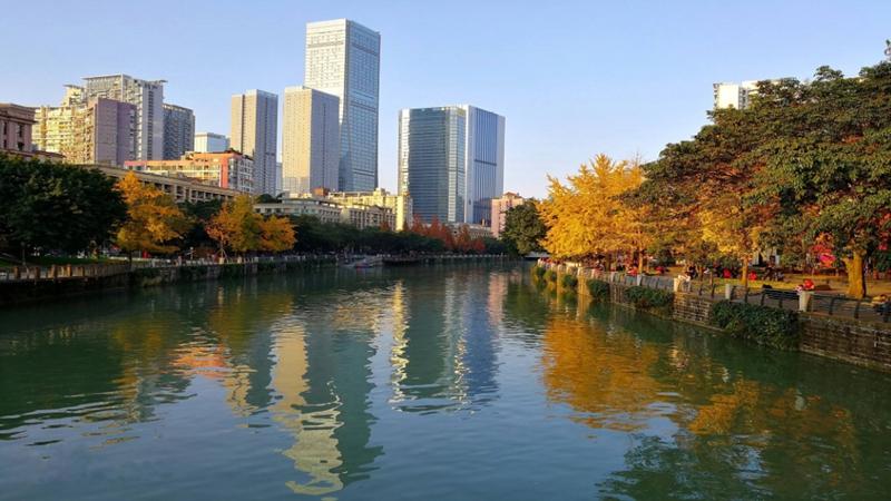 成都:治理能力與公民素質共築城市溫度