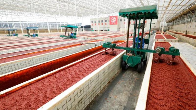 國社@四川|成都郫縣豆瓣生産廠家:嚴防疫情保生産