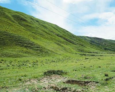 在高原藏鄉 譜一曲綠富美之歌