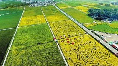 成德眉資共建都市現代高效特色農業示范區